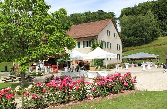 Echallens, Switzerland: Le restaurant du golf est ouvert au public. Vous pouvez y organiser des anniversaires, mariages etc.  Super lieu!
