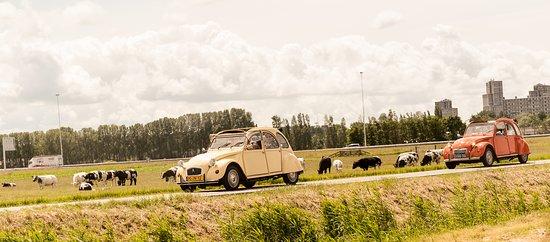 Naaldwijk, Nederland: getlstd_property_photo