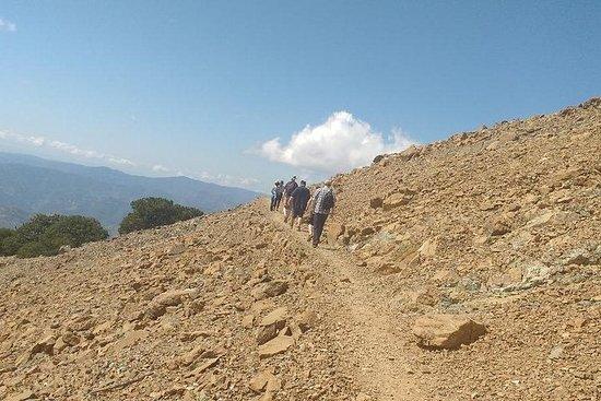 Escursione a piedi Troodos (Artemis + / Myllomeris Waterfalls