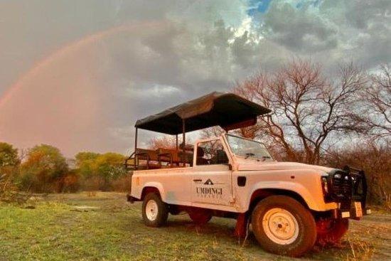Umdingi Safaris