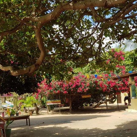State of Paraiba: Shopping rural sítio Tambaba