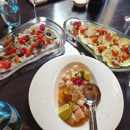 Carpaccio of zucchini and fennel, Ceviche of corvina, Cod in smoked oil