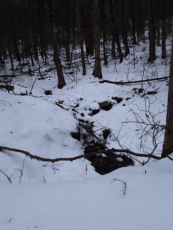 Huntington, MA: Brook near the hiking trail