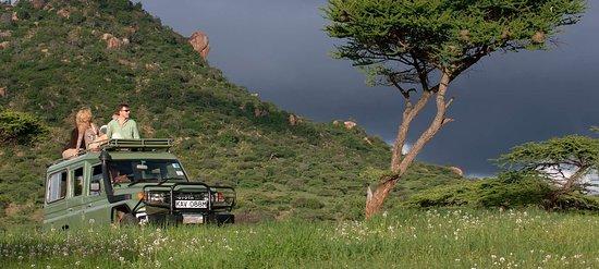 Wild race Africa Safari Tours