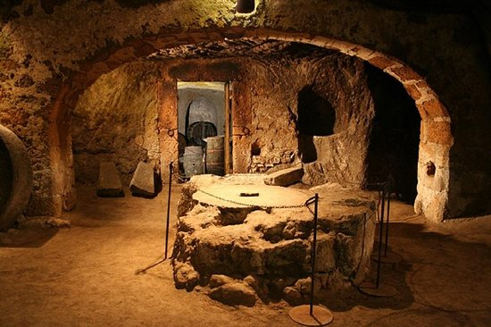 Orvieto的地下之旅,Cantine Foresi的品酒午餐