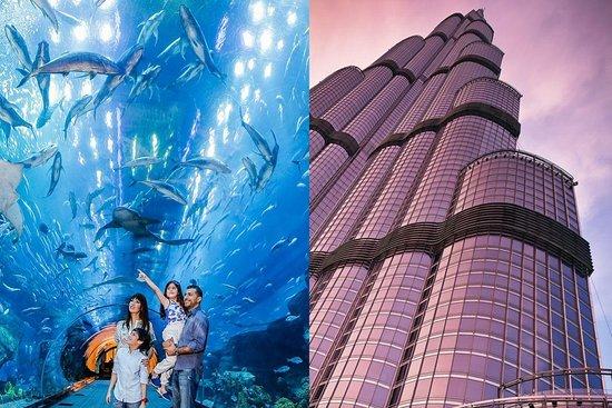 UAE TOUR SERVICES