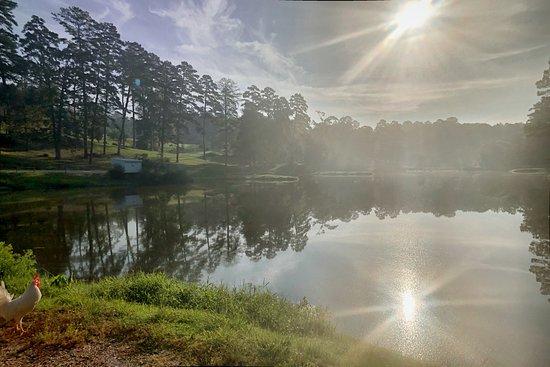 Monroeville, AL: getlstd_property_photo