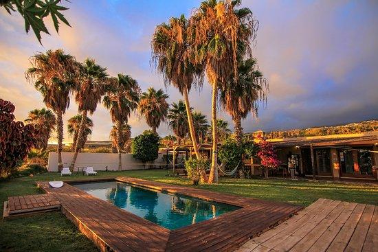 Blackstone Tenerife surf camp