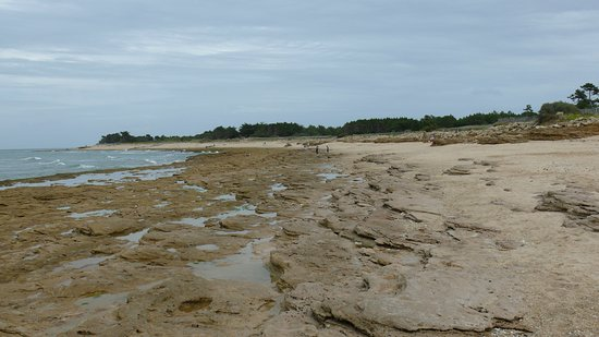 Ile de Re, France: plage sauvage