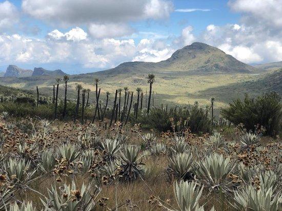 Parque Nacional Natural Chingaza Bogota 2020 All You Need To Know Before You Go With Photos Tripadvisor