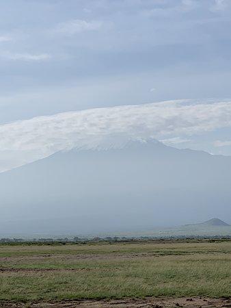 Amboseli National Park, Kenya: Blick auf den Kilimandscharo