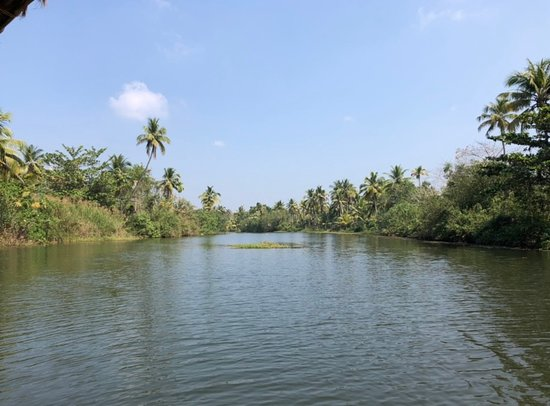 Half Day Village Backwater Country Boat Cruise : Group Tour from Fort Cochin – fotografia