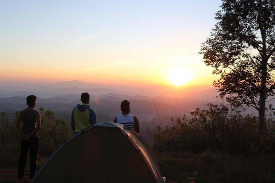 Night Camping Tour