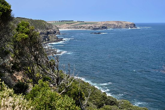 Bushrangers Bay (Flinders): UPDATED 2020 All You Need to ...