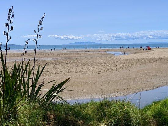 Long Bay, Auckland, North Shore