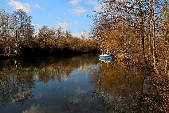 La Charente à Sireuil (Charente)