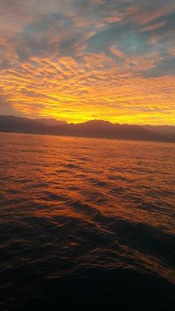 Puerto vallarta fishing charters early morning