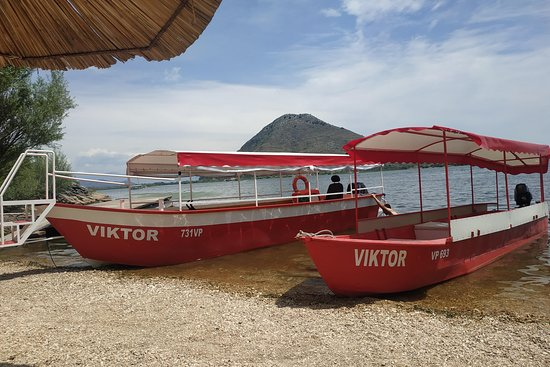 Skadar lake- Boat cruise VIKTOR