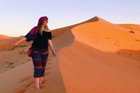 Sahara Desert Cruises
