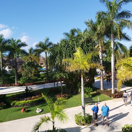 We stayed at the Allegro Cozumel  What a great resort 😀