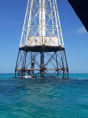 One of the best spots to see the beautiful underwater wild. Alligator Reef. 2020 January.