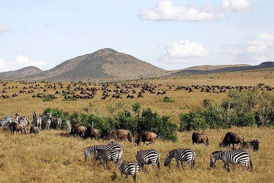 xopum safaris africa