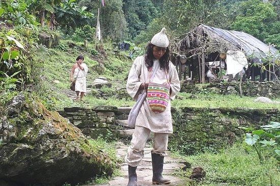 专业旅行,科吉社区内华达山脉圣玛尔塔
