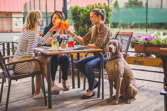 Naší restauraci můžete navštívíš i se svými mazlíčky.