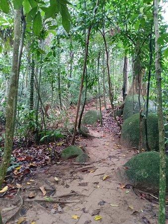 Bukit Mor
