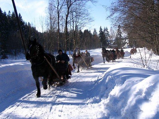 Murzasichle sleigh ride near Zakopane