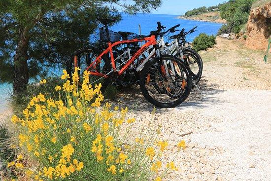 Great bikes on beautiful location