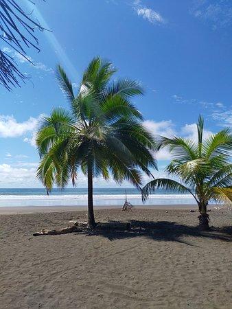 Palo Seco, Kostarika: Cocomar Beachfront Hotel