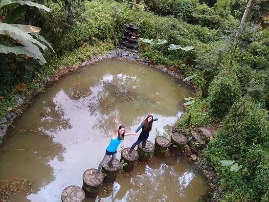 Mindo, Ecuador: en la mitad del laberinto