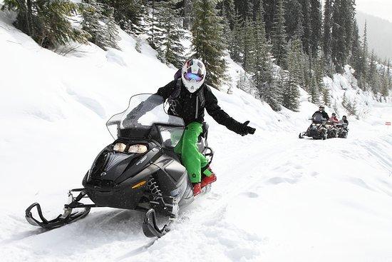 White N' Wild Banff Snowmobile Tours