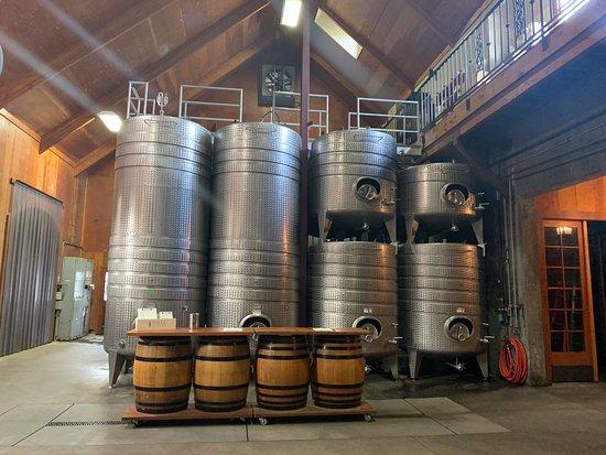 Farm Sanctuary & Vegan Wine Tour: Inside Schug Winery