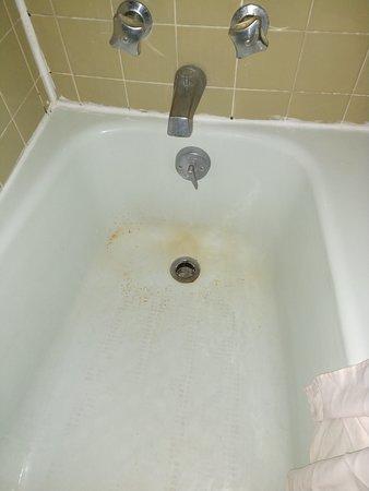 Moldy tub