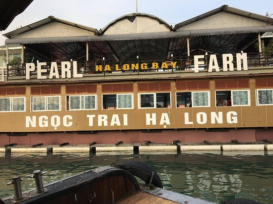 1 night excursion over Santa Maria Cruise: One of our activities including in a tour: Visit a pearl farm.