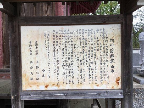 Hanekawa Yakushido