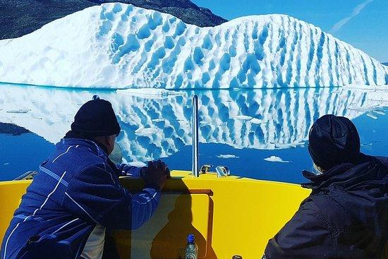 Ice Fiord Cruise