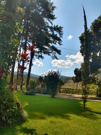 Jardim da entrada com uma mini plantação de uvas