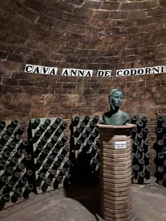 Caves Anna d' Codorniu