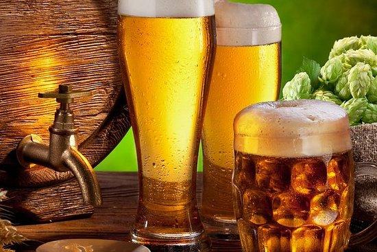 裡加啤酒廠之旅
