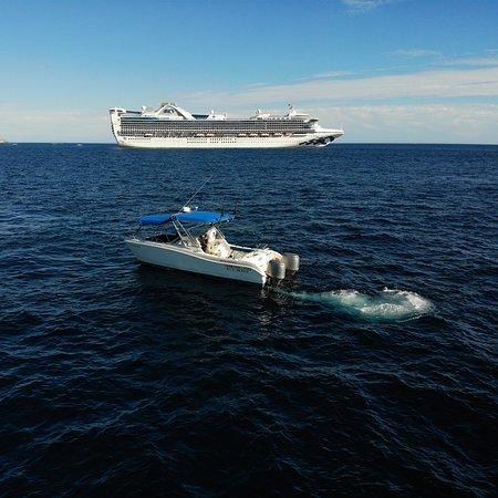 Tenemos opciones para pesca.  Embarcación para 4 personas desde: $230 usd - 6hrs. $330 usd - 9hrs  INCLUYE: Capitán y Marinero NO carnada, NO licencia  $20 usd carnada $15 usd licencia