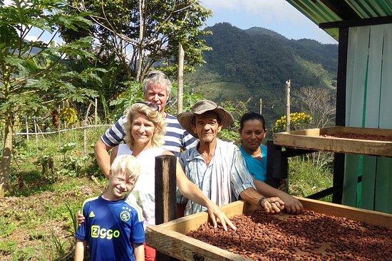 Consolidation de la paix à Antioquia et Medellin, du coca au cacao!