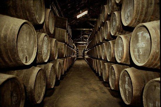 Excursão por alojamentos vinícolas no...