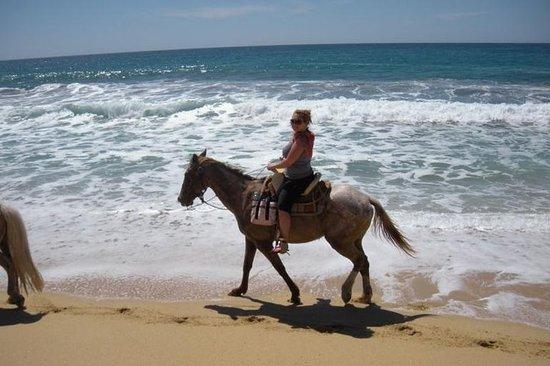 Los Cabos Shore Excursion: Horseback Riding Adventure Fotografie