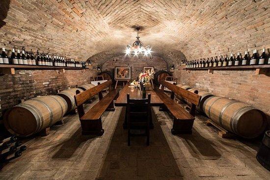 Barolo vin og mad smagning på...