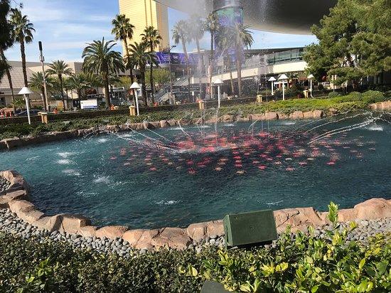 Wynn Esplanade Fountain