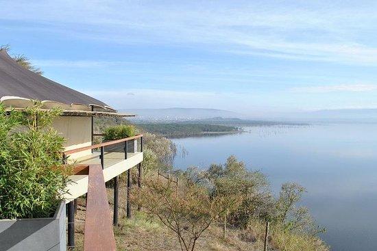 Lago Nakuru, scogliera di babbuino