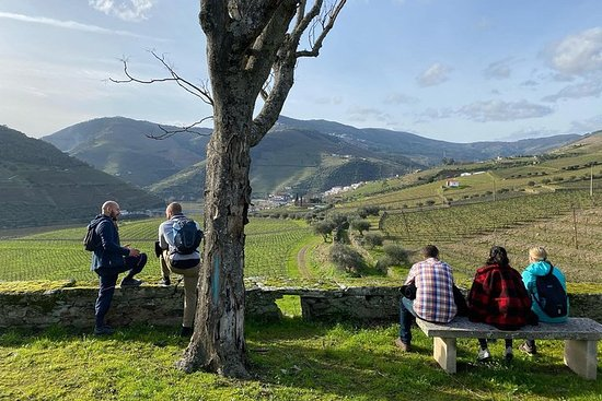HIKE in DOURO VALLEY w/ winery visit...